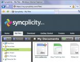 syncplicity.jpg